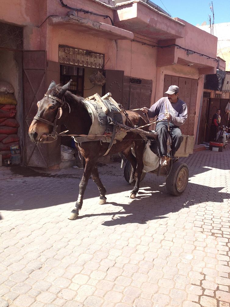 marrakech_ane